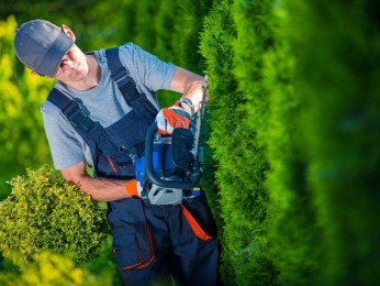 Commercial Garden Maintenance and Soft Landscaping Business for Sale - Ref: 2906